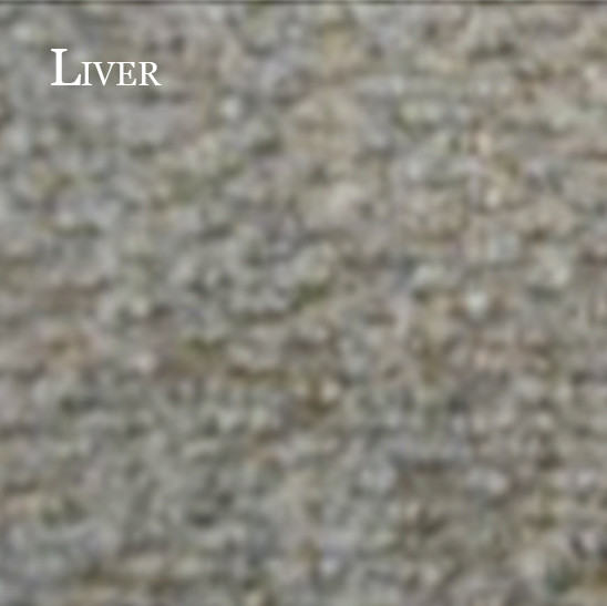 Tapis-Novanop-Liver