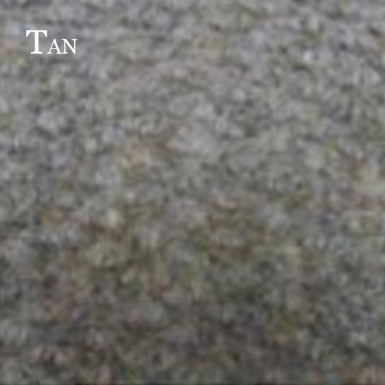 Tapis-York-Tan